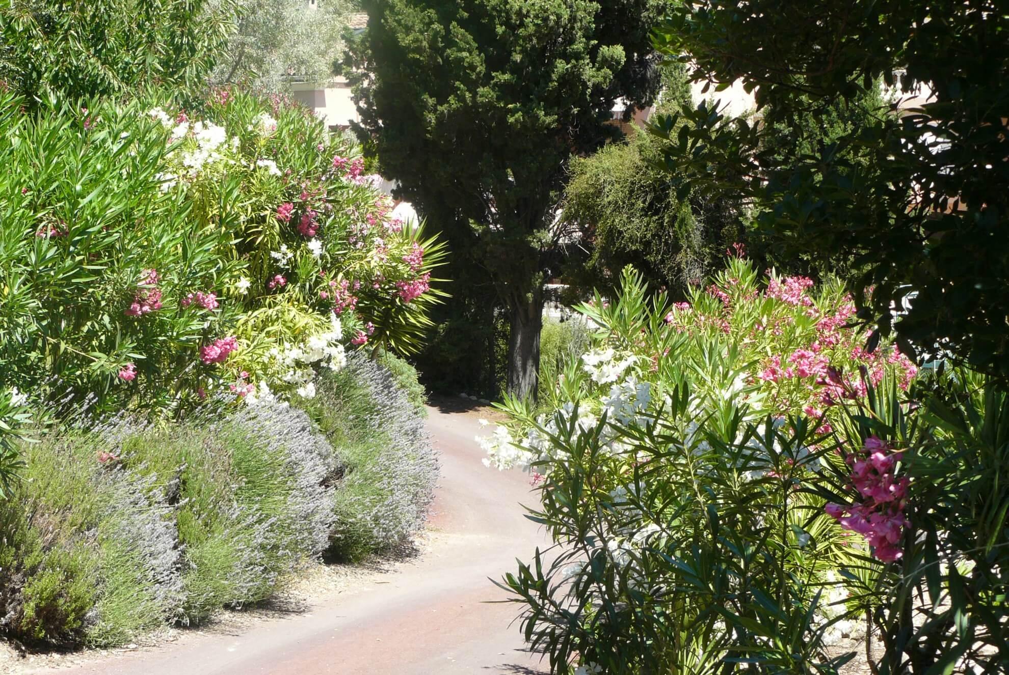 Jardins-Fragonard-le-jardin4