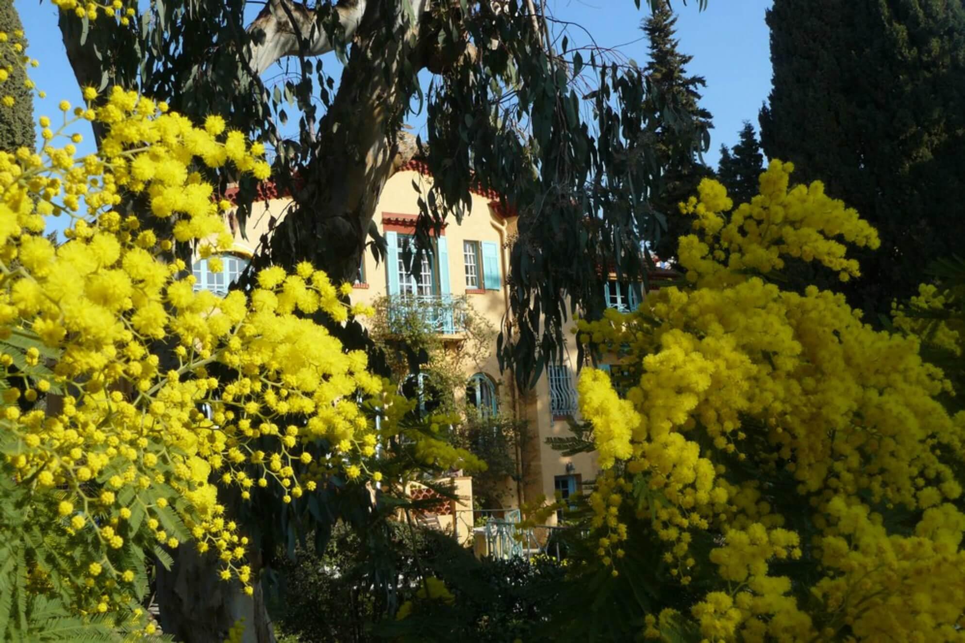 Jardins-Fragonard-le-jardin8